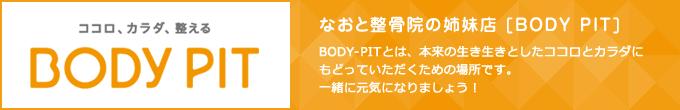 BODY PIT